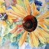Giant_Sunflower_&_Friends