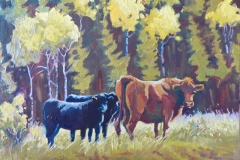 Graburn Cows