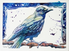 Snowy Night Crow