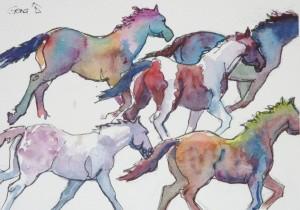Horses, running